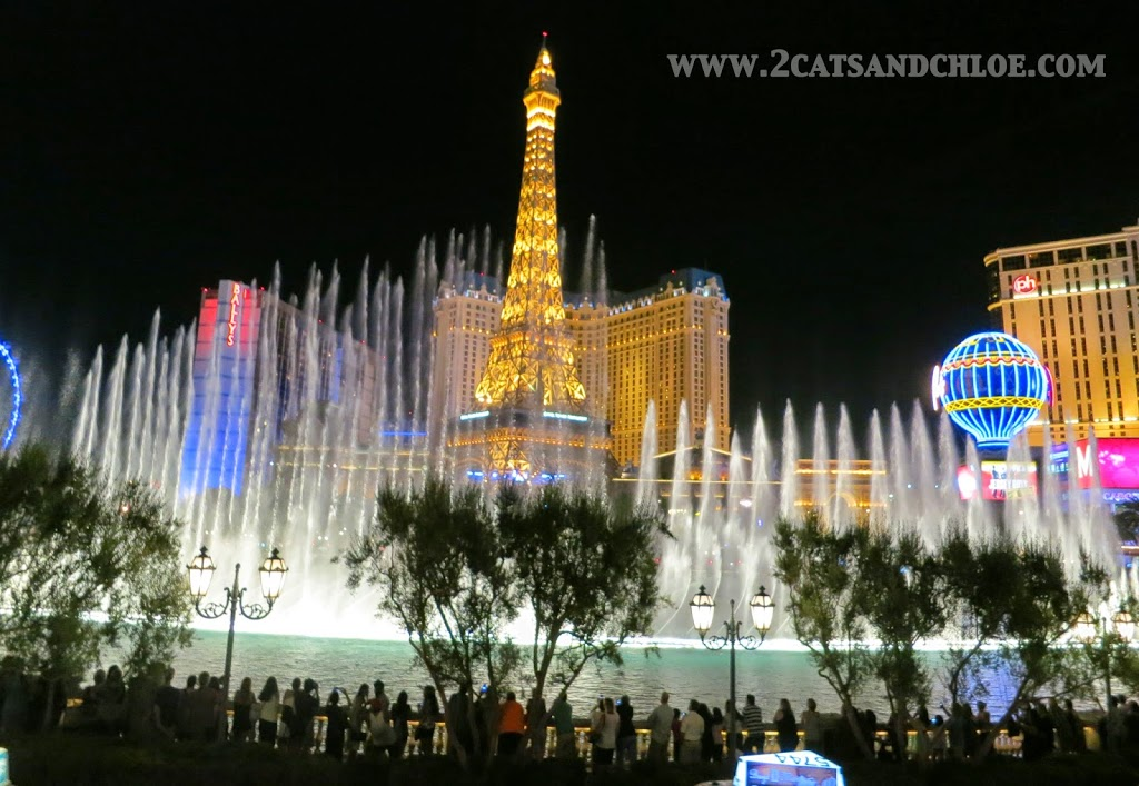 Belligio Fountains at Night in Vegas