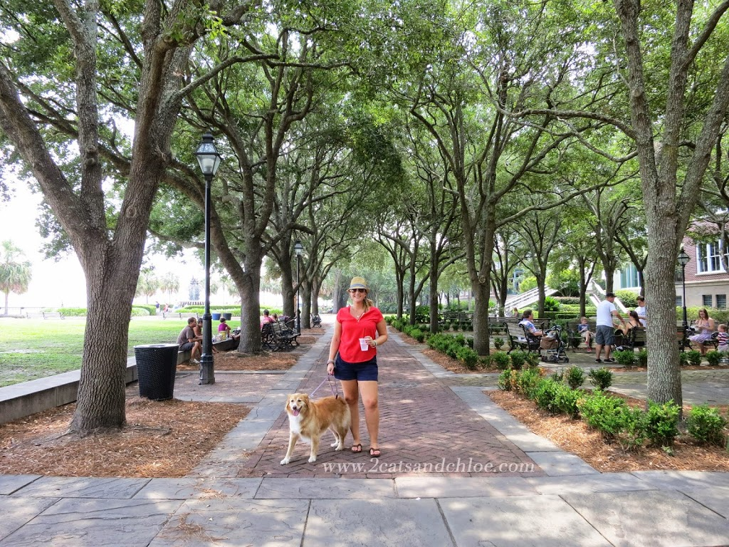 A girl and her dog in Charleston, SC