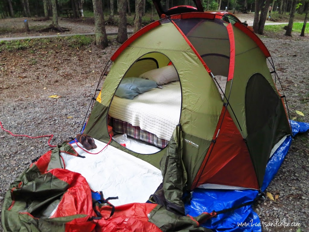 Tent Camping in Grayson Highlands State Park