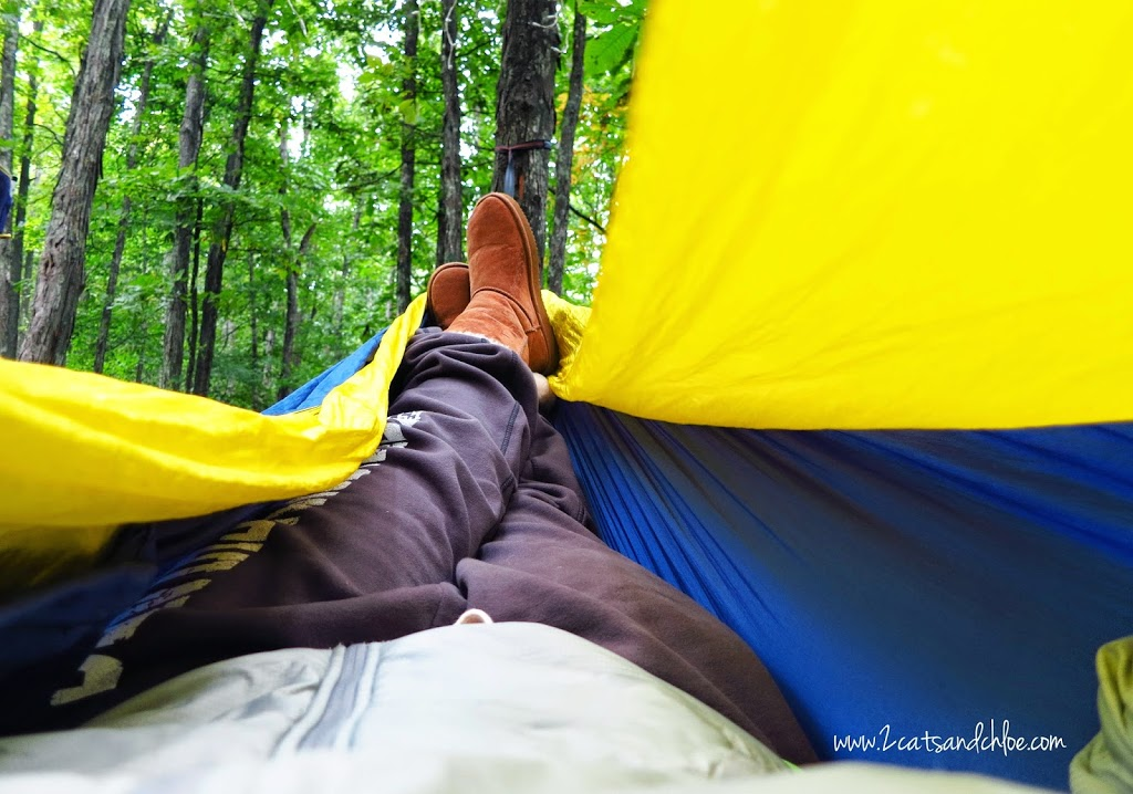 The best Camping Hammock
