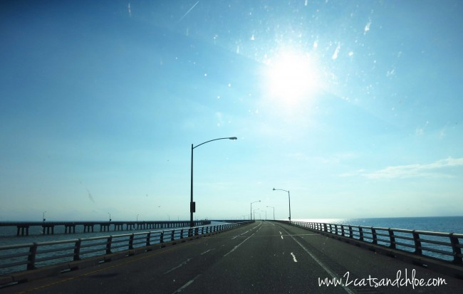 Driving across the Chesapeake Bay