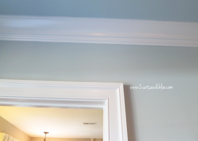 Classy, Southern style Trim and Crown Molding