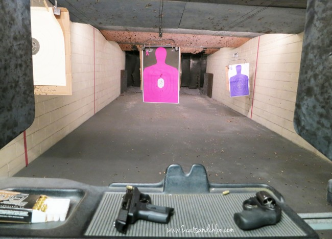 Gun Range with Hot Pink Target