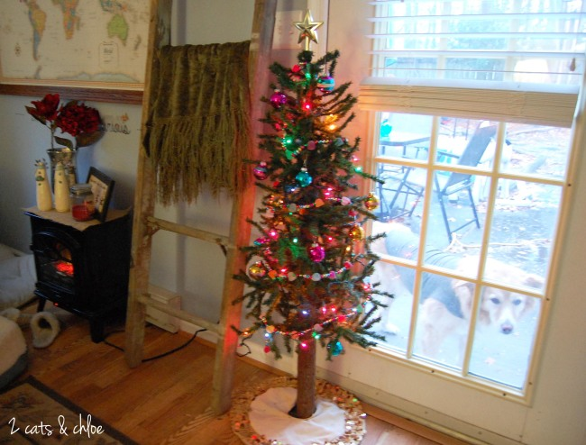 2 cats & chloe: Charlie Brown Christmas Tree