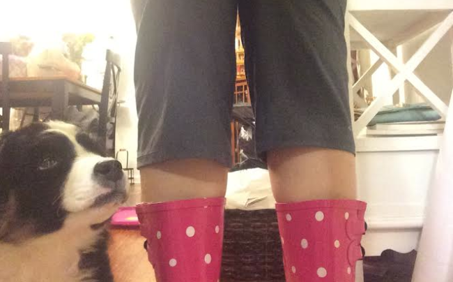 2 cats & chloe: yoga pants and rain boots