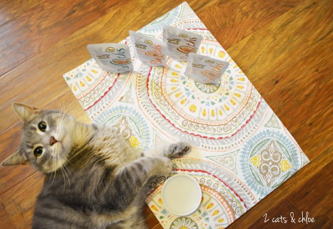 2 cats & chloe: WOW your cat with Fancy Feast Chicken Broths!