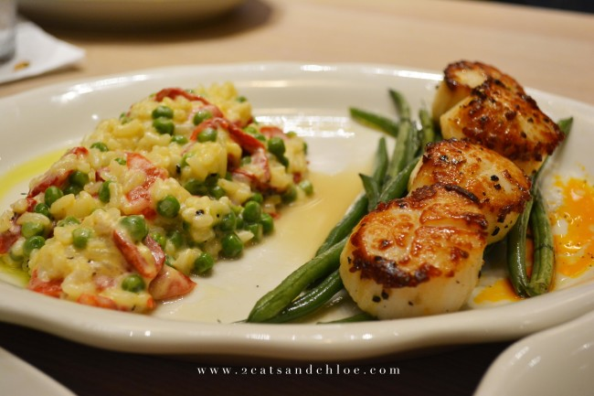 2 cats & chloe: Tupelo Honey Va Beach - Scallops and Risotto