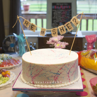 2 cats & chloe: Gender Reveal Cake with Splatter Paint