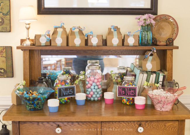 2 cats & chloe: Gender Reveal Candy Bar