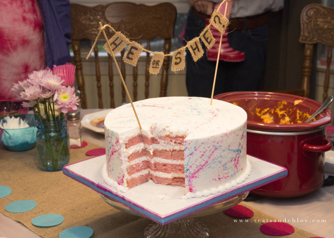2 cats & chloe: Gluten Free Gender Reveal Cake with Pink Inside
